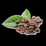 kawa venezia w ziarnach