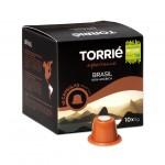 torrie_brasil